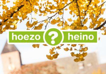 Hoezo Heino?