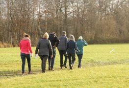 Gemeente Raalte genomineerd voor Wandelgemeente van het Jaar 2019