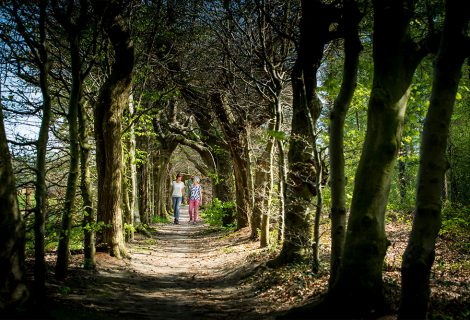 Op zoek naar de metaforen van het leven met wandelcoach Marian Lugtenberg