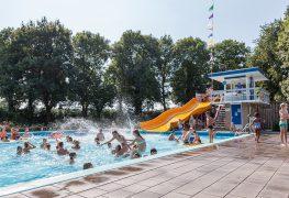 Gratis (zwem)clinics op Olympisch niveau bij Zwembad de Tippe