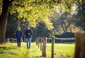 Hardlopen voor de adrenalinekick en wandelen voor de ontspanning