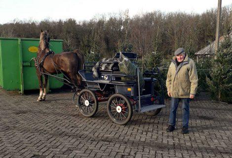 Met paard en koets naar Heino voor een kerstboom