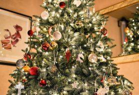 Inzameling kerstbomen gemeente Raalte